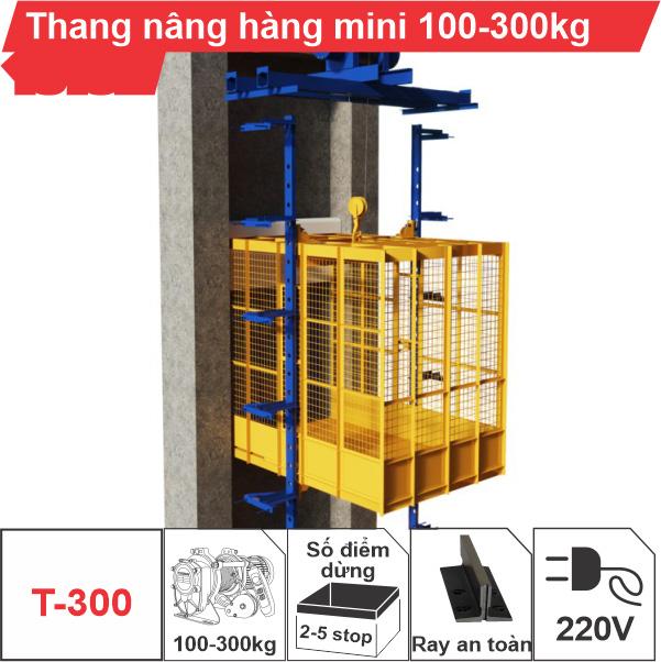 Thang nâng hàng mini 100kg-300kg